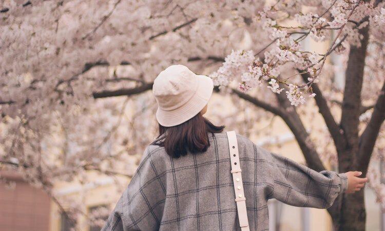 candida in primavera
