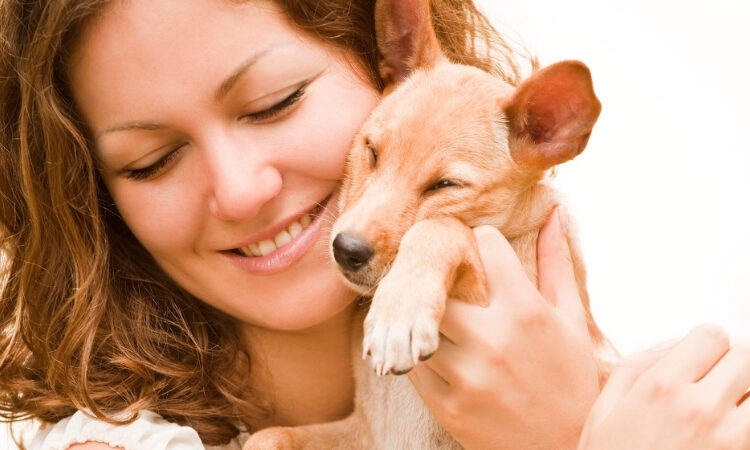 animali domestici benefici