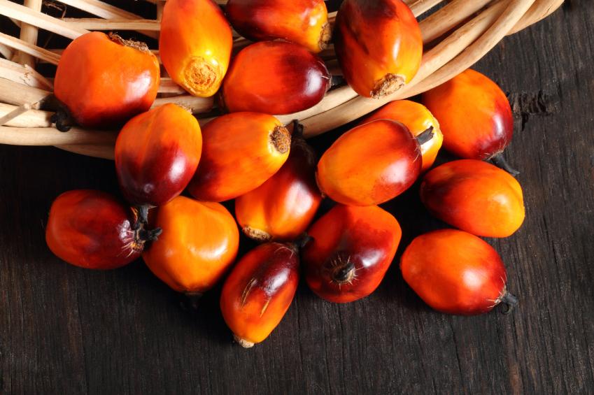 l'olio di palma fa male? una manciata di frutti della palma da olio