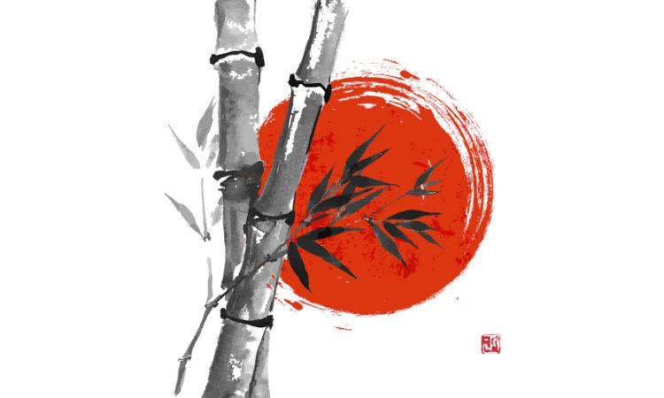 secondo l'antica medicina cinese è fondamentale accordare il proprio stile di vita al ritmo delle stagioni