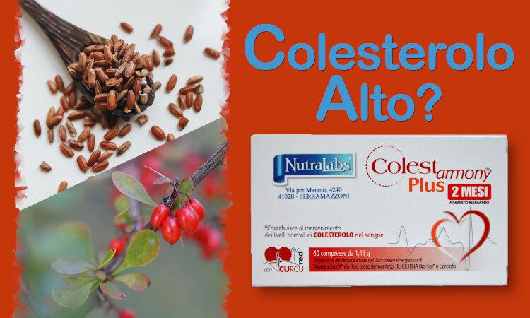 Colestarmony plus rimedio naturale contro il colesterolo alto