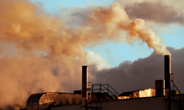 inquinamento e fertilità